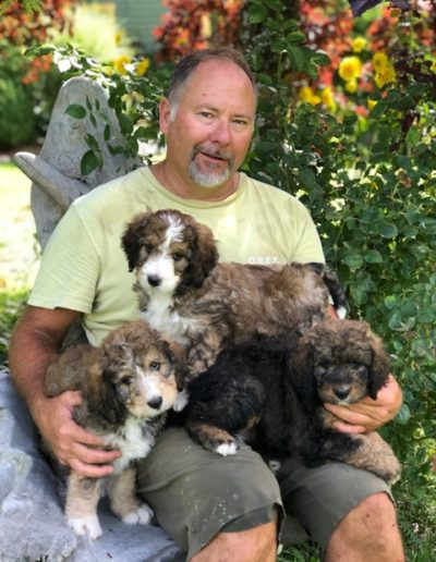 Brian and sold Tangy pups